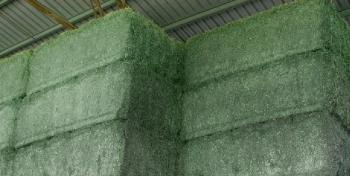 Pacas de Alfalfa Deshidratada